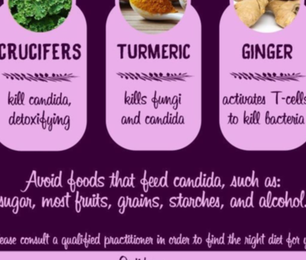 what is candida cleanse diet